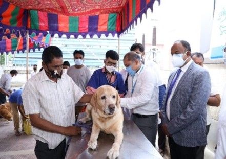 Indian Immunologicals administers 1 Lac FREE dosages of Anti-rabies vaccine on World Zoonosis Day 2021