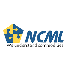 NCML Commissions Grain Storage Silos with INR 800 Mn Investments in Haryana